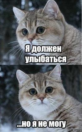 http://samlib.ru/img/a/antidepressant/vlad01/6m9.jpg
