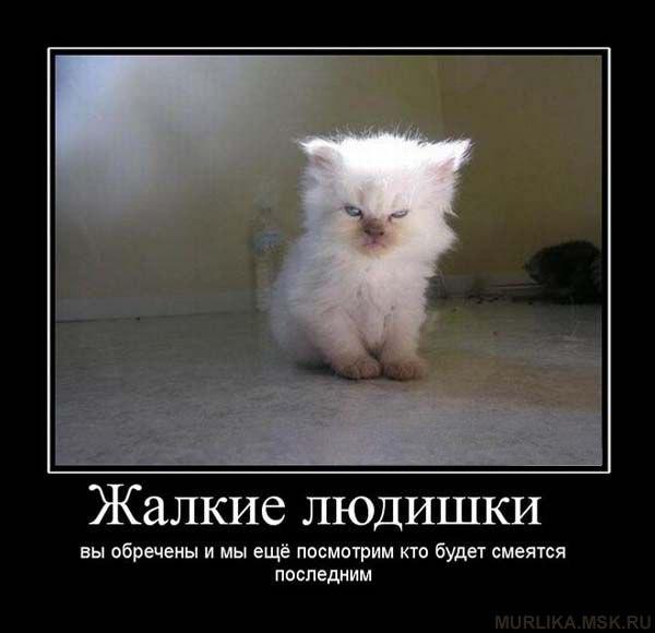 http://samlib.ru/img/a/antidepressant/vlad01/src164.jpg