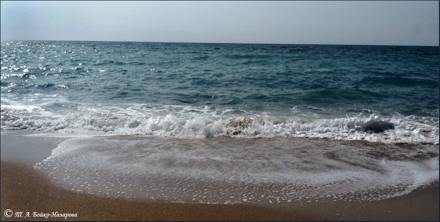 неправильно проведенной стихотворение это было у моря где ажурная пена собрали