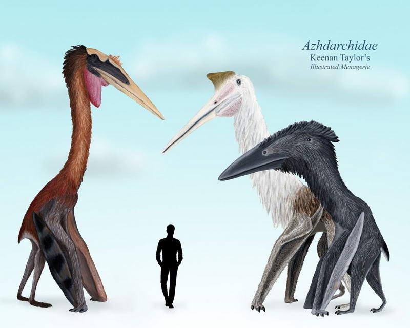 Сравнение размеров человека и аналога главгероя
