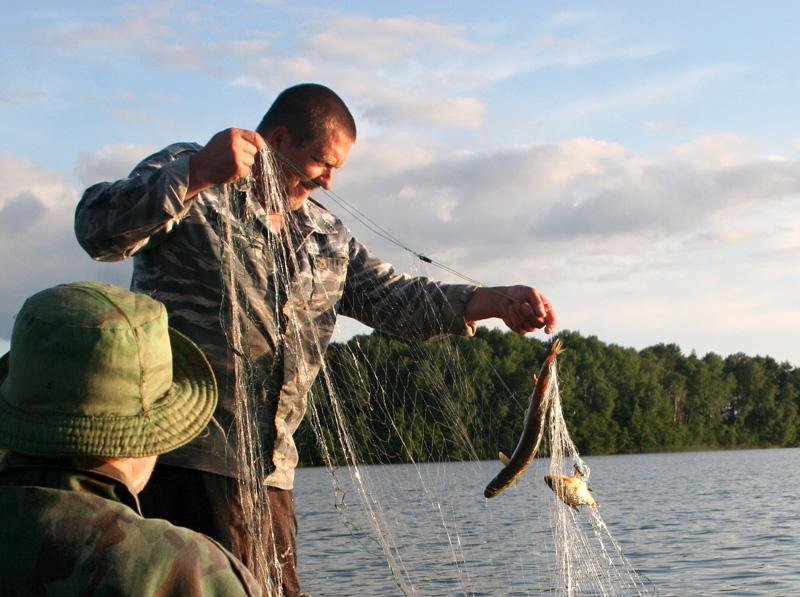 штраф за сетку за рыболовную