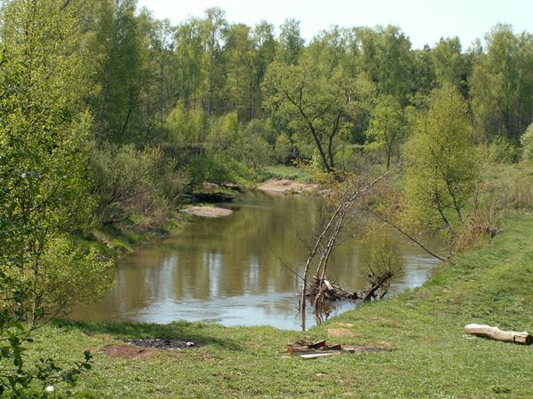 что ловят на реке воря