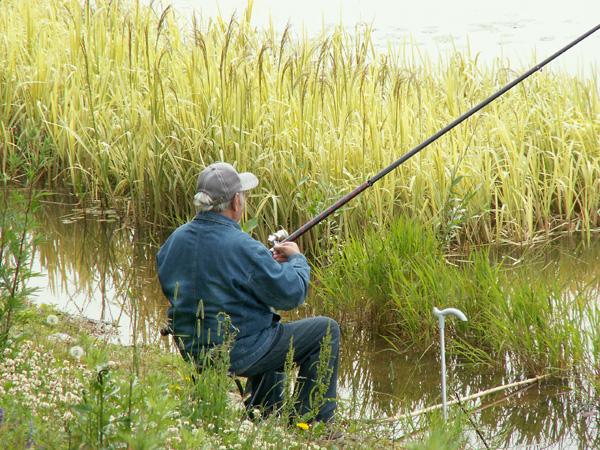 на реке однажды летом сеть тянули рыбаки