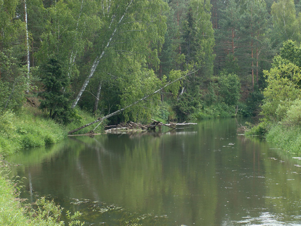 рыбалка река мележа