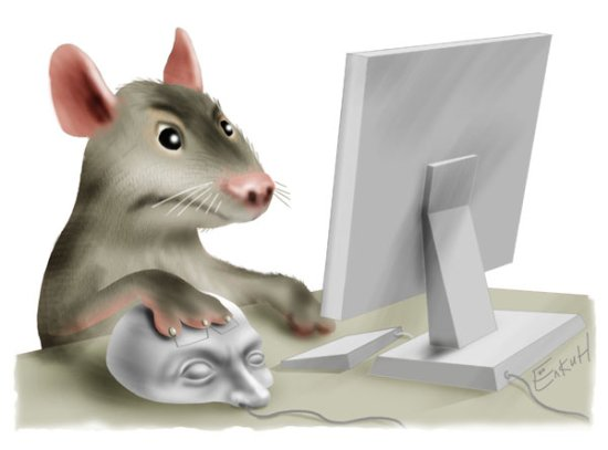 http://samlib.ru/img/f/filatow_w_w/office/ofis.jpg