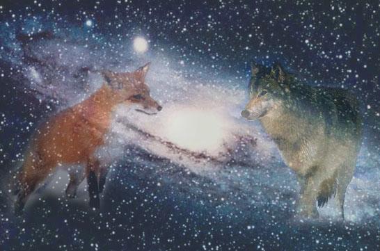 Волк и лиса спящая под боком смотреть онлайн фотоография