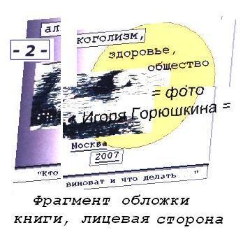 Книга 2, обложка, лицевая - фрагмент; Общество и алкоголь, проблемы и иллюзии - основные понятия, фото и монтаж Игоря Горюшкина, 2017 г.