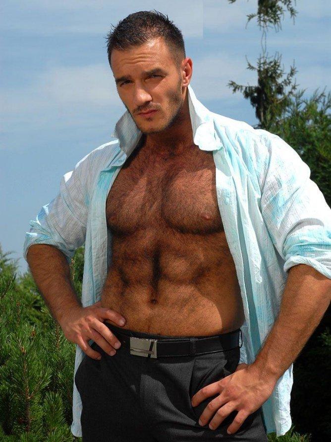 волосатая мужская грудь фото