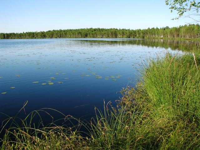 озера в марий эл для рыбалки