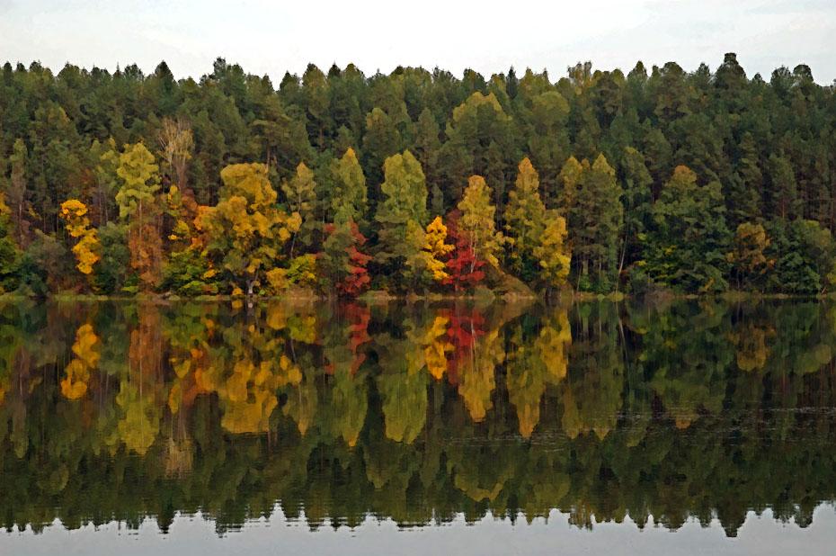 """Иллюстрации к """"золотая осень на озере Яльчик""""."""
