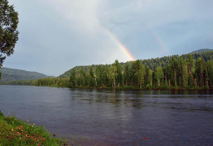 Бия полноводная река на всем своем