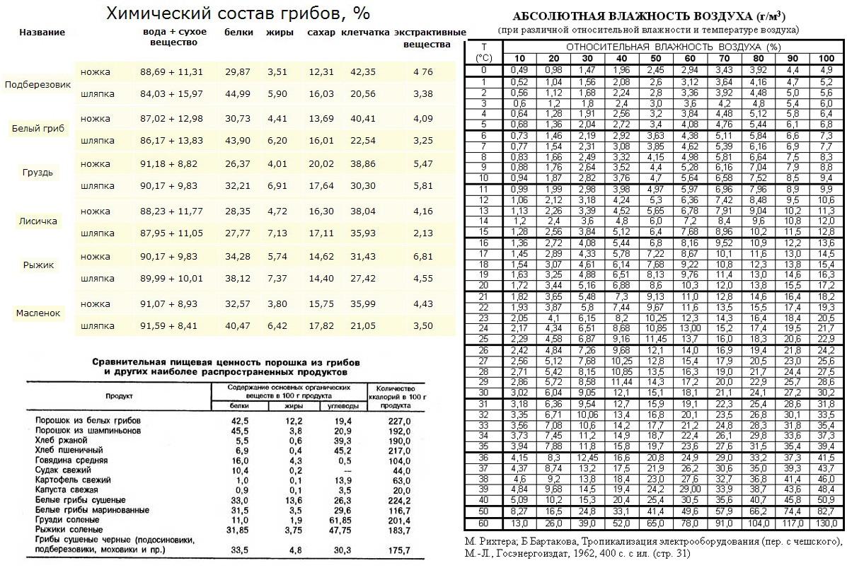 Химический состав грибов Павел Алексеевич Кучер