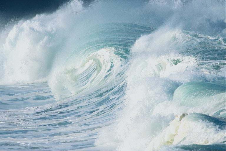 В Калининграде пройдет XVI Конференция по промысловой океанологии