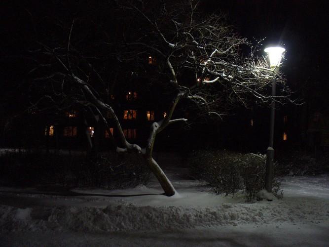 Ночь улица фонарь… терентьева ольга