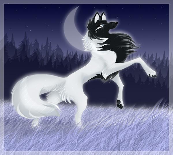 фэнтези волков картинки