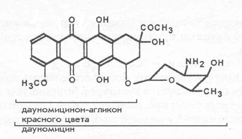 Дауномицин [О.В.Мосин]
