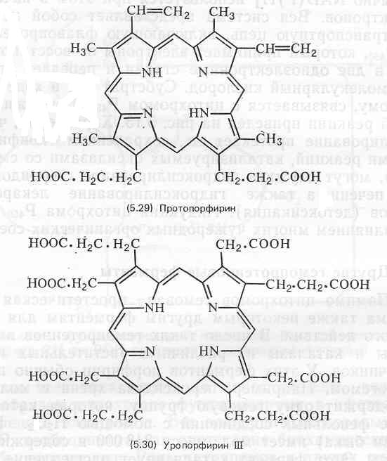 Копропорфирин