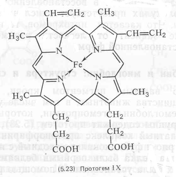 Миогемоглобин фото