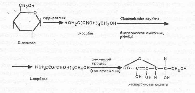 Биологическая стадия процесса