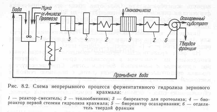 Схема ферментации крахмала