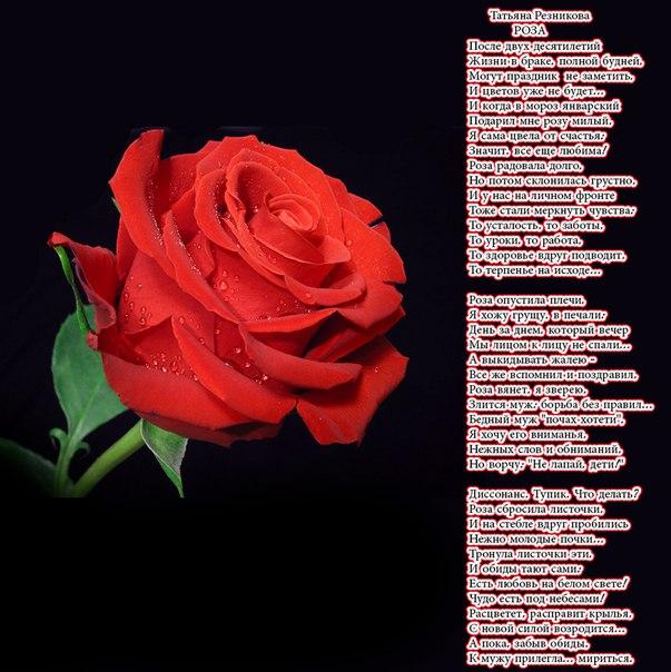 Поздравление будь как роза 76