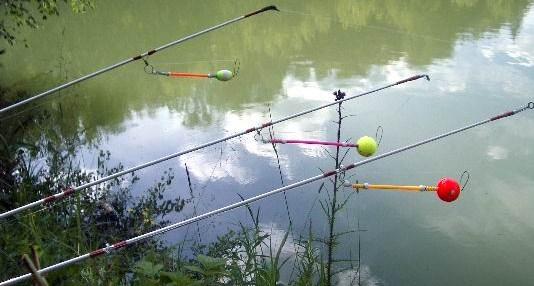 рыболовный информер