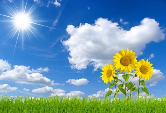 Небо небо синее небо - Реестр христианских песен, Небо Небо синее небо mp3 скачать бесплатно и без - Главная.