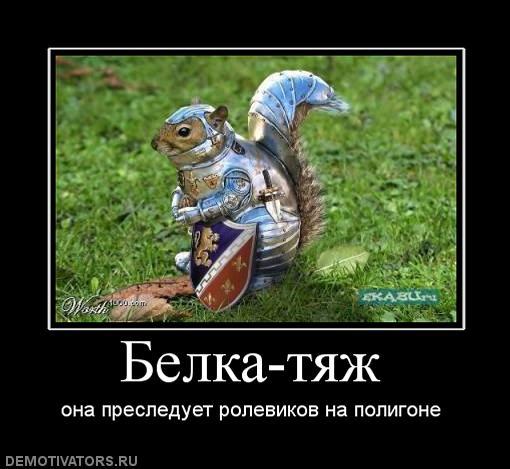 598707_belka-tyazh.jpg