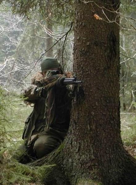 текст песни переваливаясь важно мишки в лес идут отважно