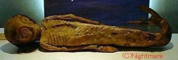 мумии-русалки в Zuiryuji Храме в Осаке []
