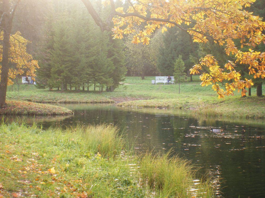 Осенней позднею порою люблю я царскосельский сад